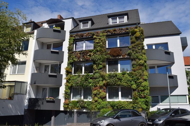 Fassadenbegrünung (Foto: Bundesverband GebäudeGrün e.V.)