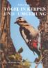 Vögel in Kerpen-Cover